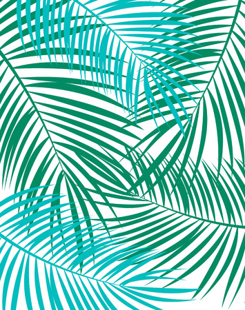 single leaf: Palm Leaf Vector Background Isolated Illustration EPS10