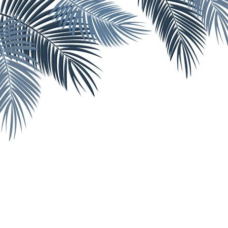 arboles blanco y negro: Hoja de palma en el fondo blanco con lugar para el texto ilustración vectorial EPS10
