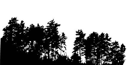 Tree Silhouette auf weißen Backgorund. Vecrtor Illustration. EPS10