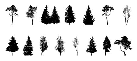 pine trees: Set of Tree Silhouette Isolated on White Backgorund. Vecrtor Illustration. EPS10 Illustration