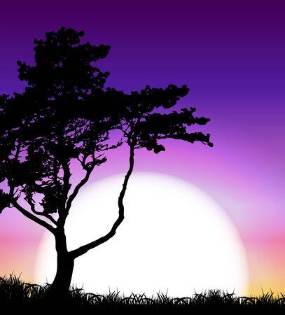 horizon over land: Silhouette of Tree on Sunset Background. Vector Illustration EPS10 Illustration