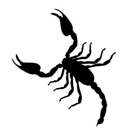 Black Large Scorpion Silhouette