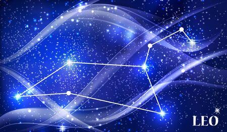number twelve: Symbol Leo Zodiac Sign. Vector Illustration