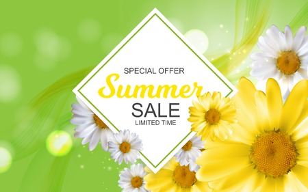 Summer Sale Banner Template for your Business. Vector Illustrati Stock Vector - 82071732