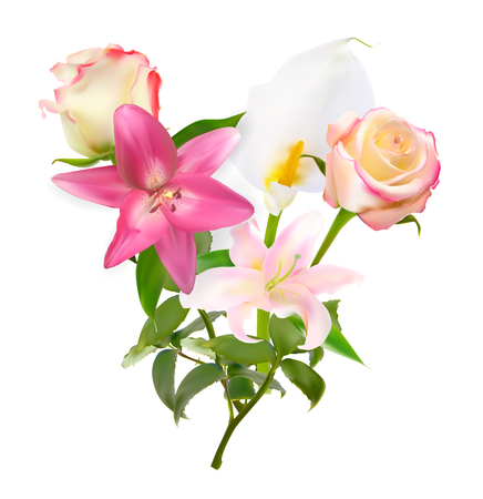 Vector Illustration with Pink Lily, Calla and Roses Isolated on White Background Illustration