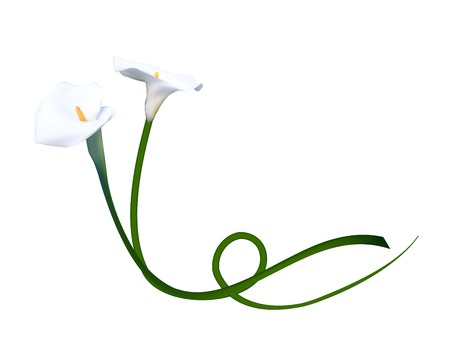 Abstract Floral Background with Calla Flower. Vector Illustratio Ilustracja