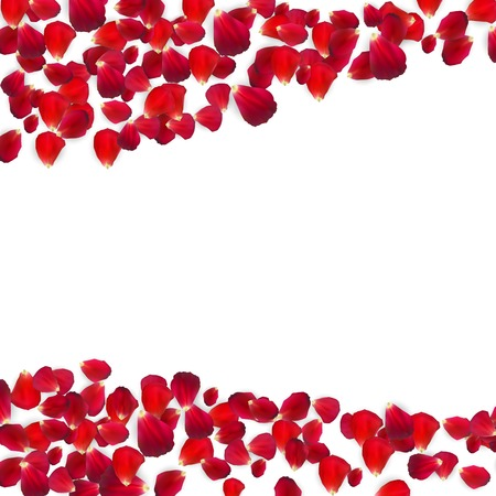 Background of Naturalistic Rose Petals. Vector Illustration
