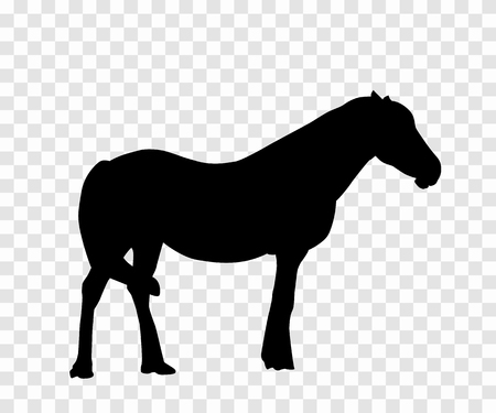 Sticker to car silhouette horse. Vector Illustration.