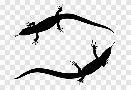 Sticker on car of reptile Silhouette of lizard. Vector Illustra