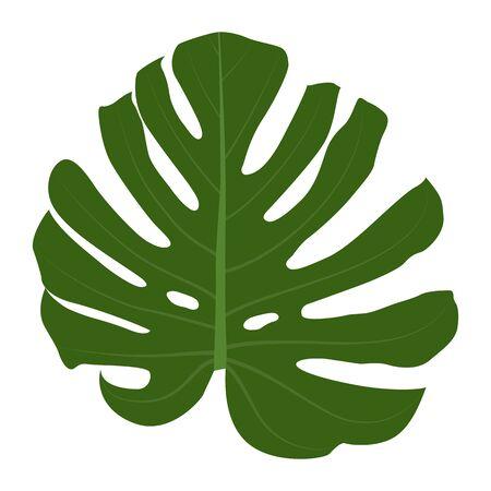 枝にカラフルな自然主義の緑の葉。ベクター・イラストリオ