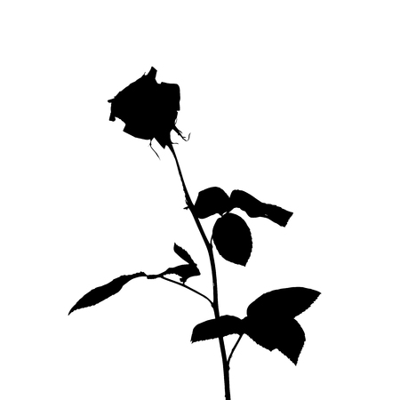 Black and white silhouette of rose. Isolated on White Background. vector Illustration