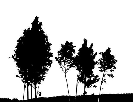 Tree Silhouette Isolated on White Backgorund. Vecrtor Illustration Vettoriali