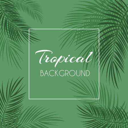 Beautiful Palm Leaf Tropical Background. Vector Illustration. EPS10