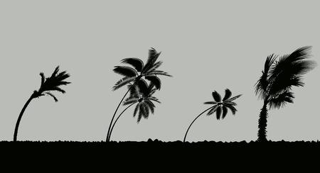 Palmiers pendant la tempête et l'ouragan. Les feuilles volent dans le ciel à cause d'une tempête. Illustration vectorielle Vecteurs