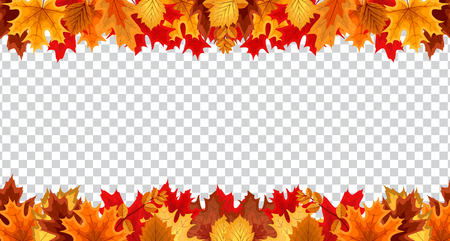 Autumn leaves border frame with space text on transparent background. Can be used for thanksgiving, harvest holiday, decoration and design. Vector Illustration