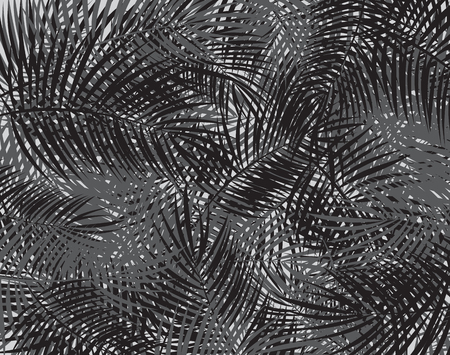 Black and White Palm Leaf Vector Background Illustration EPS10