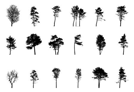 Set of Green Tree Isolated on White Background. Vector Illustration. EPS10