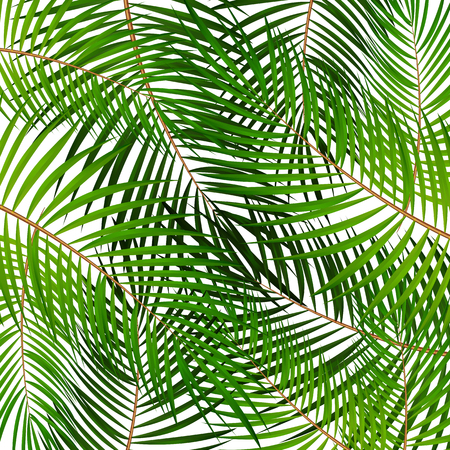Palm Leaf Vector Hintergrund Illustration EPS10