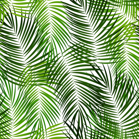 Illustrazione EPS10 del fondo di vettore della foglia di palma