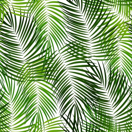 Ilustración de fondo de Vector de hoja de palma EPS10