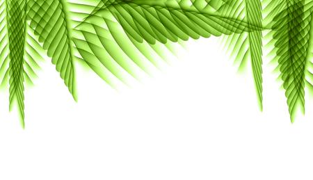 Palm Leaf Vector Background Illustration EPS10 Stock Illustratie