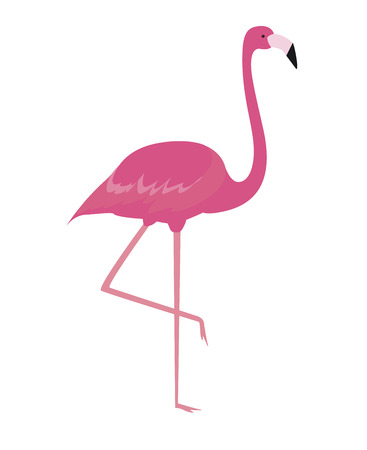 Colorful cartoon pink flamingo on one leg stands on white background. Vector Illustration. EPS10