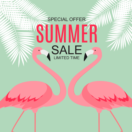 Summer Sale concept with Colorful Cartoon Pink Flamingo Background. Vector Illustration.