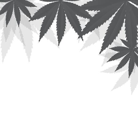 Cannabis leaves background. Vector illustration EPS10