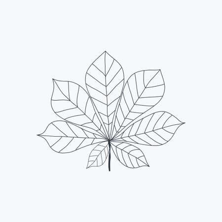 Chestnut leaf icon isolated. Vector Illustration EPS10