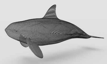 Ornamental structural design of Whale. Art object. 3D illustration. Stock Photo