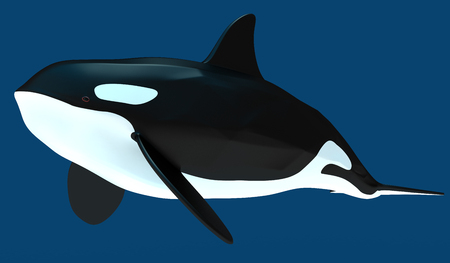 A model of a stylized killer whale. Art object. 3D illustration.