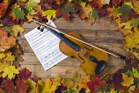 note musicali: Violin on fallen leaves in the frame of maple leaves, studio lighting, the view from the top Archivio Fotografico