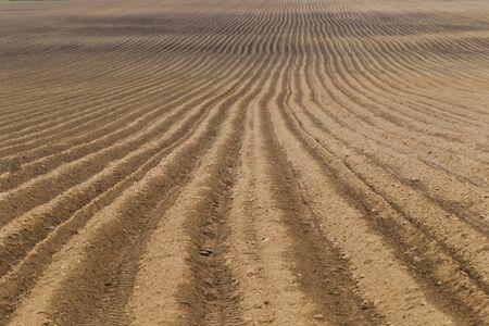 hilera: paisaje rural con el campo agrícola arado, la luz natural Foto de archivo
