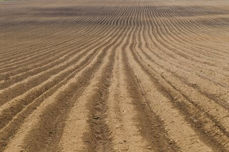 in a row: Rural landscape with plowed farm field, natural light