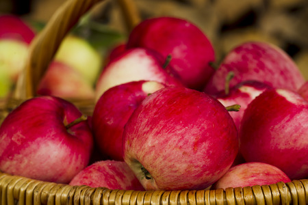 luz natural: Fresh apple harvest in a wicker basket wood, natural light