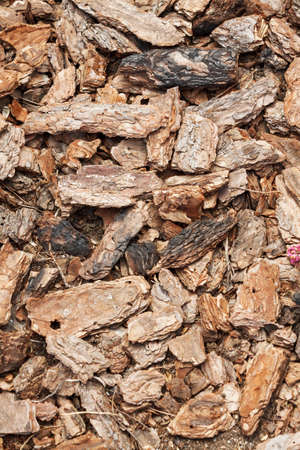 Crushed tree bark texture background closeup. Shredded brown tree bark for decoration and mulching or for playground. Stockfoto