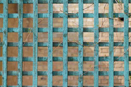 Green wooden trellis, lattice on brick background Banque d'images