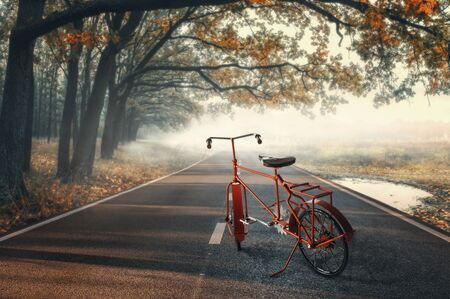 Vintage red Bike on the autumn road