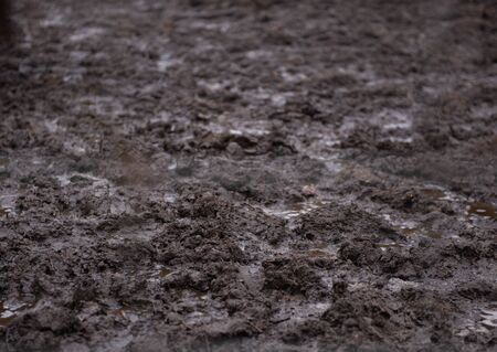 Texture of mud and puddles top vew - close-up