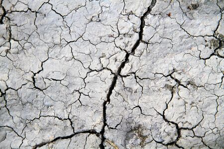 Cracks of the white soil in the dry season, the effect of global warming.