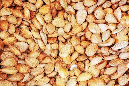 Macro photo of a walnut mendal. Close-up of fresh organic nutmeg walnut. Standard-Bild