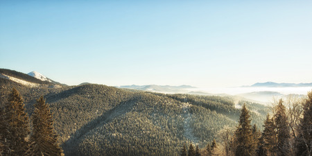 Beautiful view from the top of the mountain on marvelous landscape of trees and sky    Banque d'images
