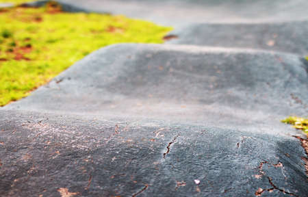 Old crooked asphalt bike path in public park Stock Photo