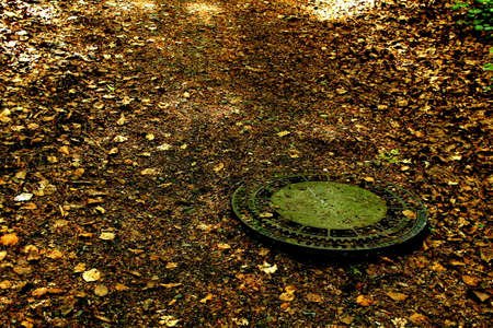 shady: An old hatch on a shady forest road covered with orange leaves Stock Photo