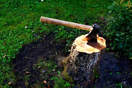 An axe with a wooden handle on a stubwith a background of green grass