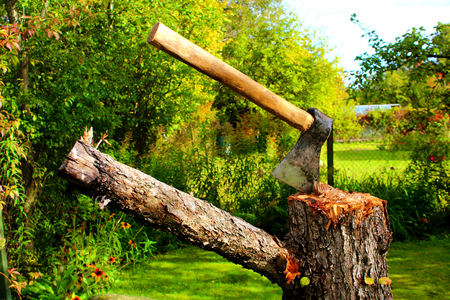 cleave: Axe on a stump in a green garden
