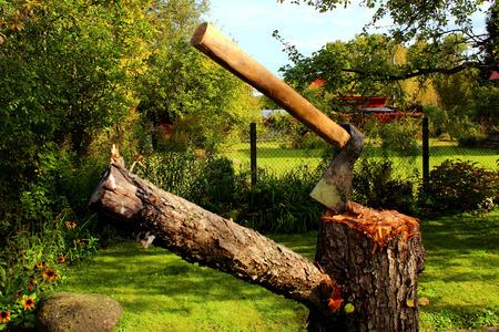Axe on a stump in a green garden