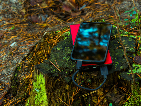 Black smartphone and  red powerbank on tree stump Stock Photo