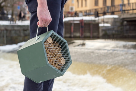 Man holding a green insect hotel in a hand standing close to water in urban environment during winter
