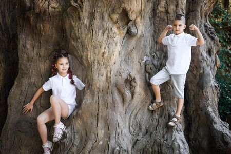 pretty lovely young girl with pigtails and her brother wearing white shirt climbing the stem of the old tree in the park